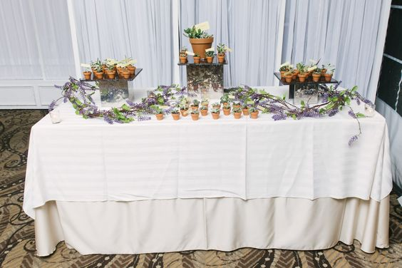 Succulent Plants as favors http://www.aliciakingphotography.com/